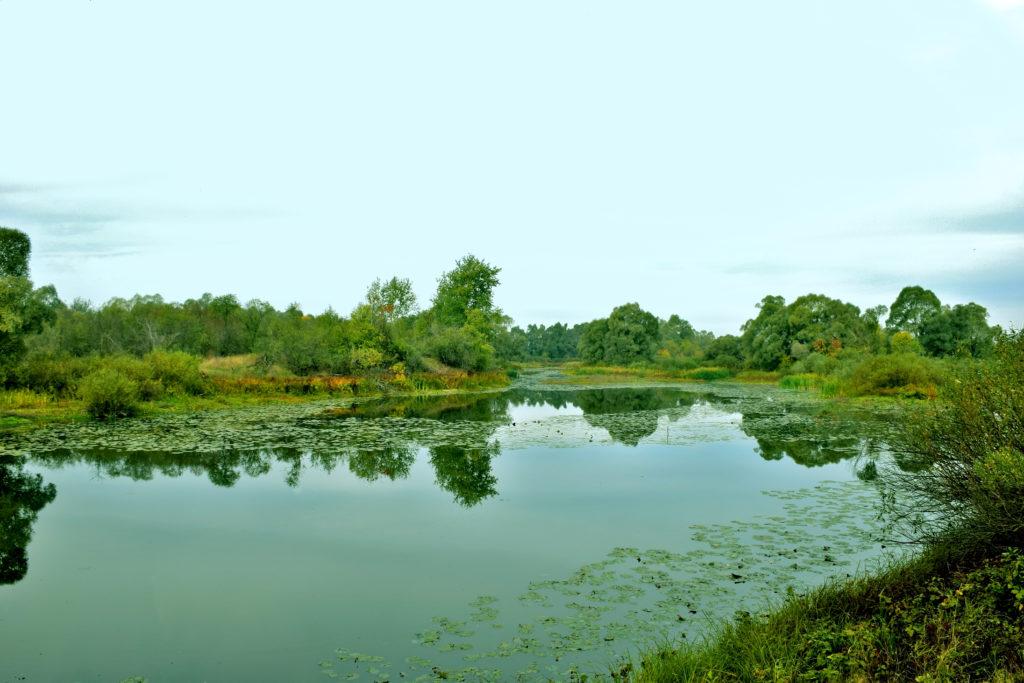 Contoh Reservoir Air Tawar Segar Fakta Menarik Tentang Badan Air